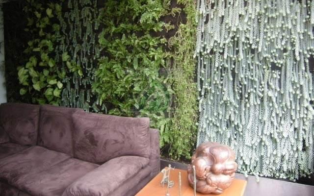 Jardín Vertical Interior Renacimiento, Cuauhtémoc