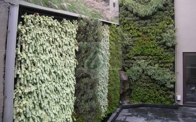 Jardín Vertical Exterior, Bosque de las Lomas