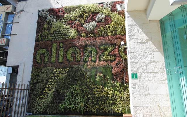 Jardín Vertical Bodegas Alianza, Tláhuac