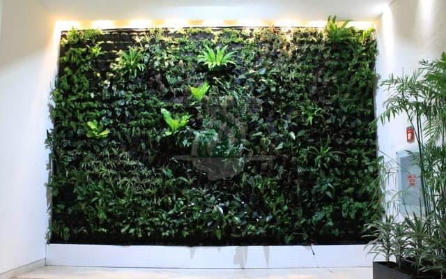 Jardín Vertical Interior Zedec Santa Fe, Álvaro Obregón