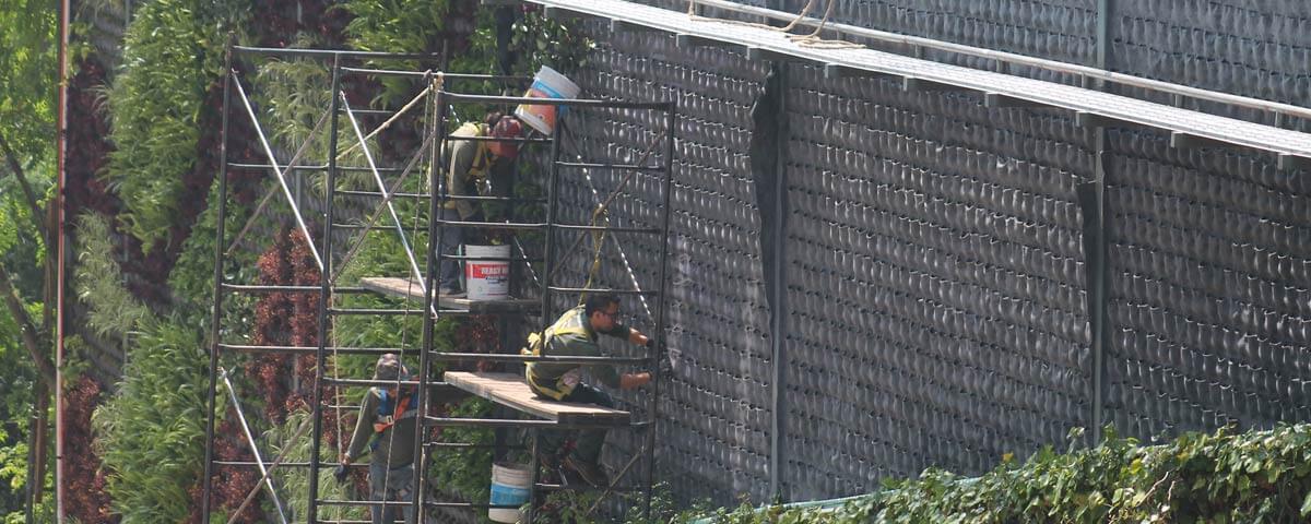 Reforma Muro Verde Natural