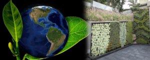 Beneficios de los Jardines Verticalesen el Ambiente