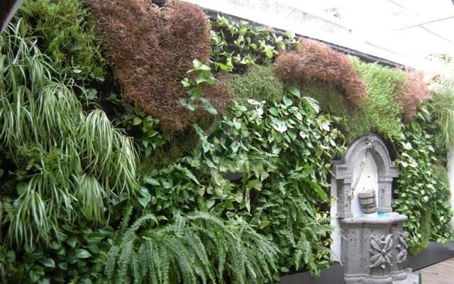 Tipos de jardines verticales o muros verdes generaci n verde for Historia de los jardines verticales