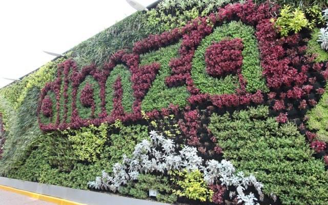 Muro Verde natural exterior