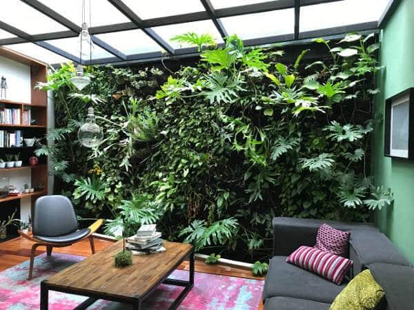 Cuidados para jardines verticales interiores - Jardin vertical interior ...