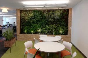 Jardin Vertical Interior Reforma
