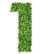 Numero1_verde