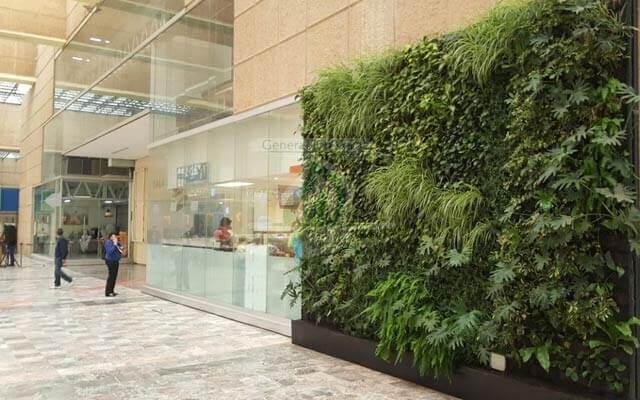 Jardin Vertical Oxxo Siglo XXI