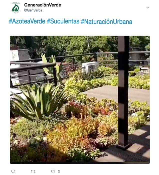 Azotea Verde