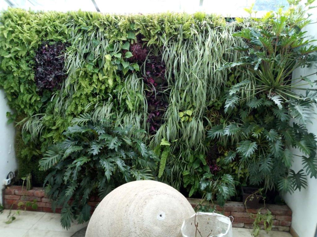Muro con Plantas