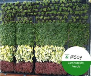 Jardines verticales y conciencia ambiental
