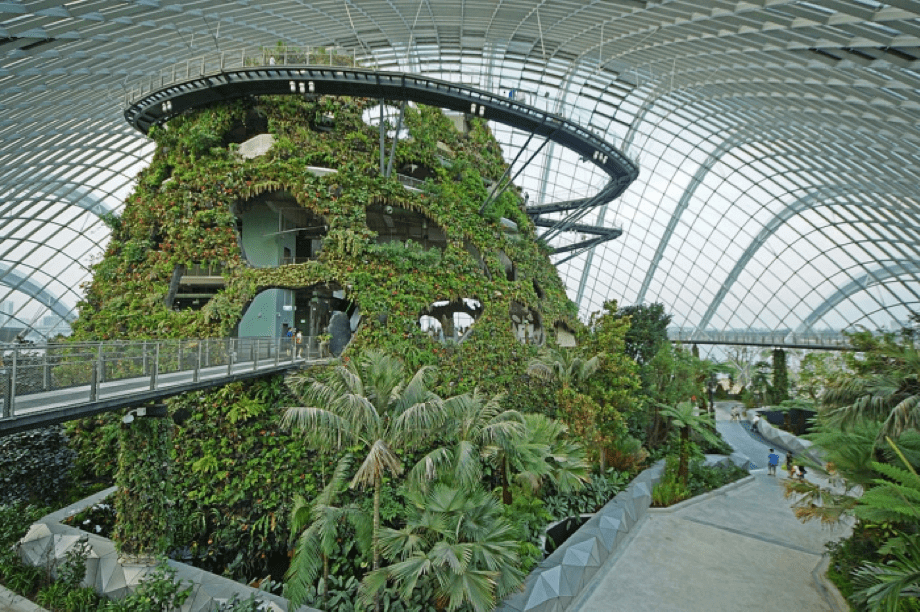 Cuenta con torres que se elevan a cincuenta metros de altura, también hay pasillos suspendidos rodeados por 18 imponentes súper árboles que imitan árboles reales y que albergan las plantas reales en un colosal esfuerzo por conservar ejemplares poco comunes y recuperar el equilibrio natural.