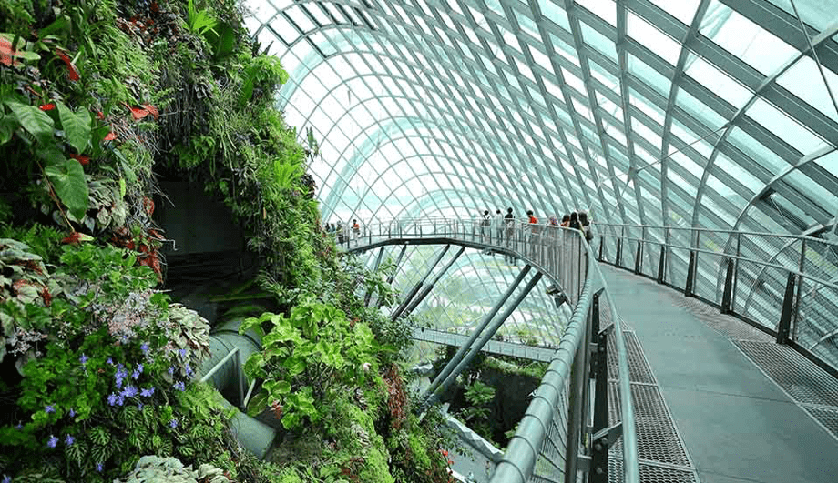 Gardens by the Bay (Singapur)