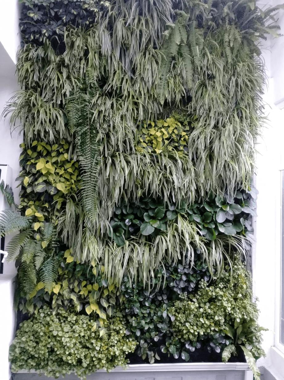 Muro Verde GV