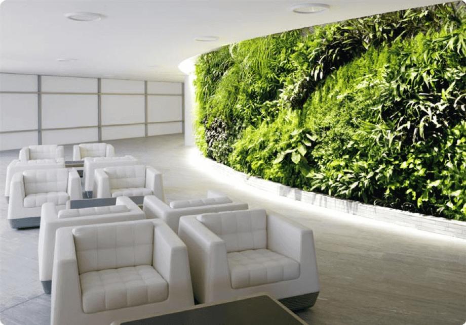 Muro Verde en oficina