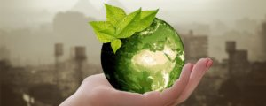 ¿Quieres ayudar al ambiente? Te decimos cómo