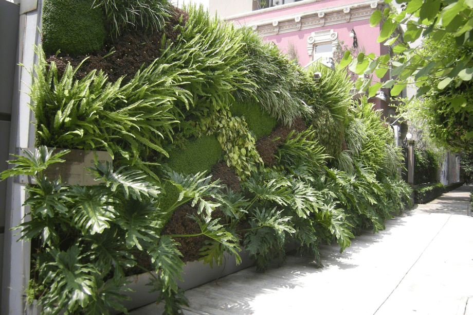 Jardín Vertical - Instituto Goethe