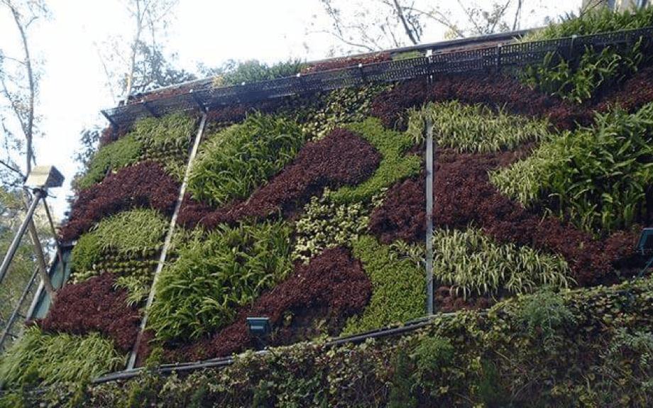 Jardín Vertical exterior - Reforma CDMX