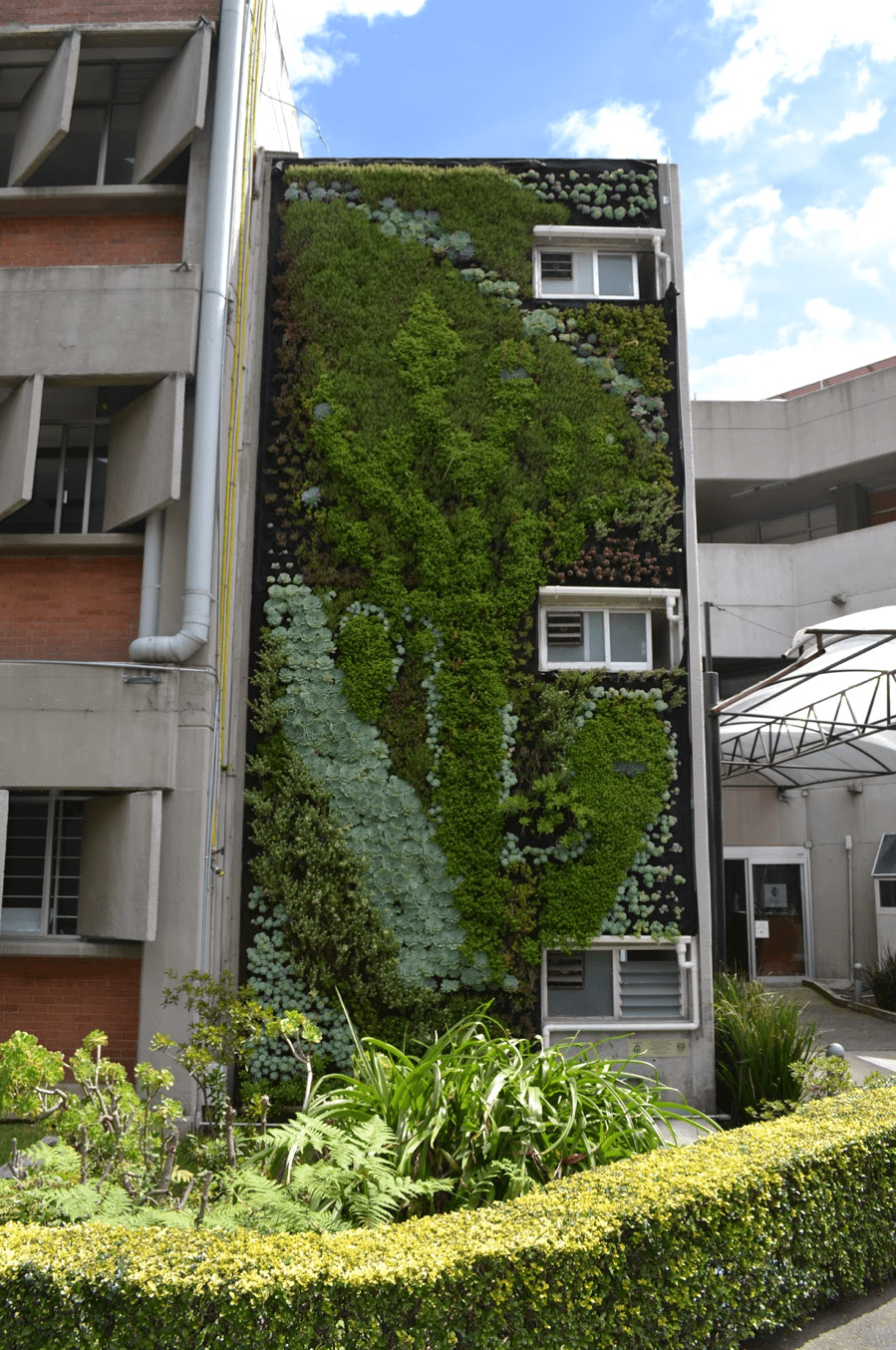 Jardín Vertical - Ecología de la UNAM