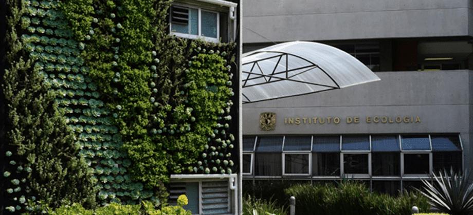 Jardín Vertical exterior - Ecología de la UNAM