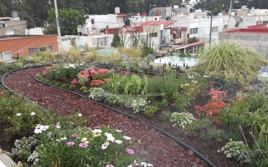 Azotea Verde en Churubusco