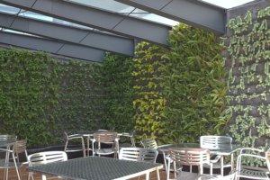 Muro Verde JLL