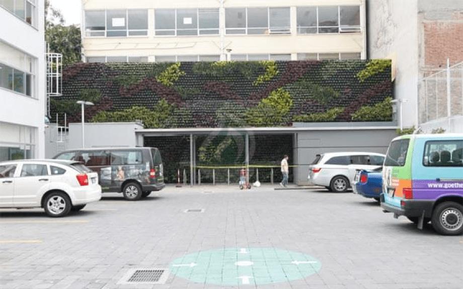 Jardín Vertical Dentro de las Instalaciones