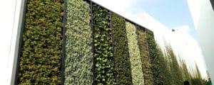 Adiós a los espacios grises, ¡hola muros verdes!