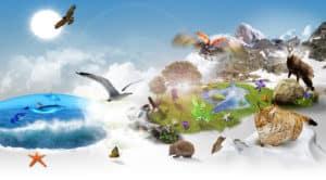 22 de Mayo – Día de la Biodiversidad
