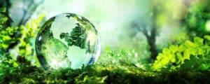05 Junio – Día mundial del Medio Ambiente