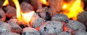 Briquetas Ecológicas: Alternativas sostenibles al carbón y la leña