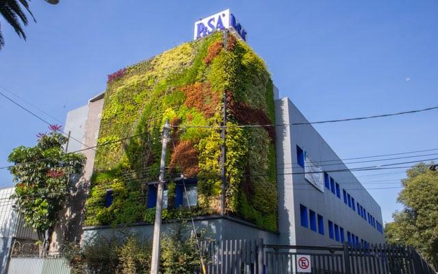 Muro Verde PISA