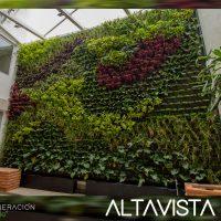 Altavista-264.jpg